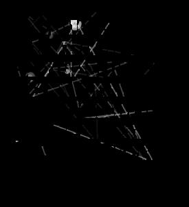 3722-si-puo-essere-tutto-cio-che-si-vuole-basta-trasformarsi_380x280_width